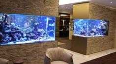 fabulous wall fish tank design