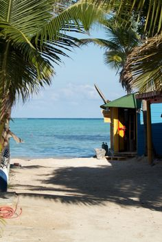 Bonaire... want to live there and go snorkeling everyday :)