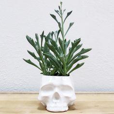 Large Ceramic Skull Planter
