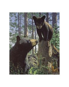 Stump Jumper ~ Fine-Art Print - Black Bear Art Prints and Posters - Bear Pictures Wildlife Paintings, Wildlife Art, Art D'ours, Baby Animals, Cute Animals, Wild Animals, Baby Pandas, Love Bear, Bear Art