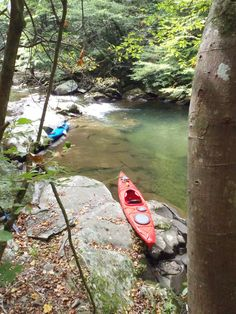 Had awesome fun kayaking the Elk river in tn! Stopped for awhile to swim by a rope swing ..
