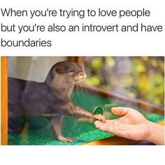 """34.1k Likes, 780 Comments - Bustle (@bustle) on Instagram: """"literally me (@huffpostlifestyle)"""""""