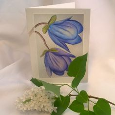 Uutuus! Postikortti+kirjekuori 4€ Sirpa Järvisen akvarellimaalaus laadukkaalla, kiiltäväpintaisella kartongilla.