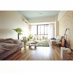 umeji21さんの、ギター,賃貸,ベンジャミン,アンスリウム,植物,ゴムの木,パキラ,モンステラ,一人暮らし,観葉植物,無印良品,部屋全体,のお部屋写真