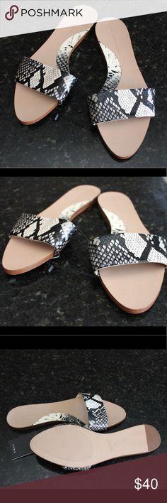 Zara Python Slides Sleek and stylish. Faux Python print, slide on, brand new with tags. Zara size39= 8 Zara Shoes Sandals
