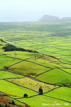 Vale da Achada - Terceira Island, Azores, Portugal--these grids are fences made of volcanic rocks Las Azores, Terceira Azores, Azores Portugal, Spain And Portugal, Portugal Travel, Places To Travel, Places To See, Places Ive Been, Portuguese Culture