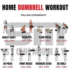 Gain Muscle Mass Using Only Dumbbells With 10 Demonstrated Exercises The Christmas holidays are nearly here and for most of us our local gyms close during this festive period. For the crazy ones who. Full Body Dumbbell Workout, Full Body Weight Workout, Weight Training Workouts, Gym Workout Tips, At Home Workout Plan, At Home Workouts, Fitness Exercises, Home Dumbbell Workout, Workout Plans