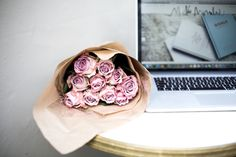 """""""Successful people are not gifted; they just work hard, then succeed on purpose"""" - 6 STEPS TO HELP YOU GROW YOUR BLOG"""