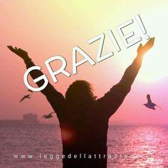 Ecco un piccolo metodo personale per essere grati durante il giorno... Alimentare la gratitudine èimportante per avere un vibrazione positiva! #leggedattrazione #gratitudine www.leggedellattrazione.it/2015/11/gratitudine.html