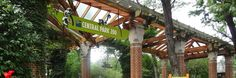 Miquelli's Amerikablog: Activiteit: Central Park Zoo – New York City  #miquellisamerikablog