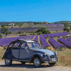 French Country Exterior, French Country Style, Traction Avant, 2cv6, Auto Retro, Car Posters, Small Cars, Old Cars, Belle Photo