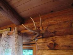 Deer Antler Curtain Rod Holders Google Search Rustic Curtain Rods Curtain Rod Holders Wood Curtain Rods