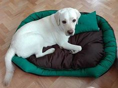 Handmade bed for large size dogs, manually sewn and finished, made from resistant materials, size 100/80 cm, hight 23 cm, filled with silicone fluff and comfortable for any furry pets. Removable cushion with 2 sides and removable cover with zipper. Unique design! The rectangular shape of the bed and high margins are ideal for squatting and provides a sense of security for the pet . The bed is washable at 30 ° C.