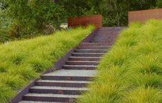 Love these grasses and the steel stairs. Andrea Cochran Landscape Architect Steel Stairs, Gardenista
