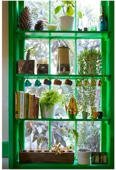 colorful window shelves