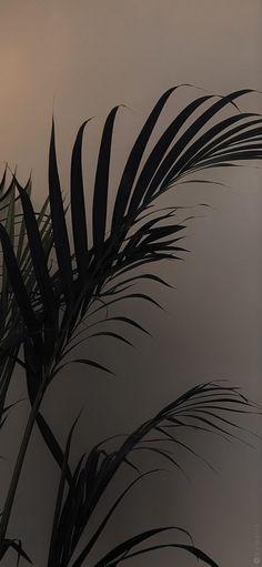 Vintage Flowers Wallpaper, Teal Wallpaper, Plant Wallpaper, Apple Wallpaper, Cute Wallpaper Backgrounds, Nature Wallpaper, Aesthetic Backgrounds, Aesthetic Iphone Wallpaper, Aesthetic Wallpapers