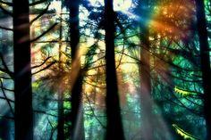 "*** Three Rivers Deep (book series) ""A two-souled girl begins a journey of self-discovery..."" #Nature #threeriversdeep #Elemental #Devvi -- Rainbow light"