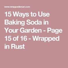 15 Ways to Use Baking Soda in Your Garden - Page 15 of 16 - Wrapped in Rust