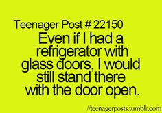 even if i had a refrigerator made of glass