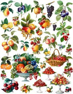 Fruits Collage Sheet - Vintage Digital Scrapbook - Scrapbooking Paper - Download Images - Printables - Clipart