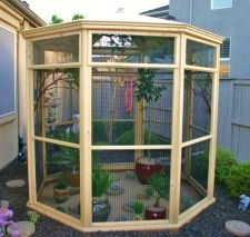 Aviary For Your Finches