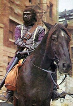 Planet Of The Apes: The TV Series (1974)