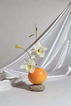 Fruit Photography, Still Life Photography, Creative Photography, Product Photography, Still Life Photos, Still Life Art, Hand Flowers, Japanese Flowers, Summer Fruit