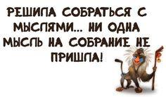 Юмор |женский | смешные картинки |на русском | позитив | мысли