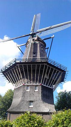 """De Bloem of De Blom is de naam van een stellingmolen in Amsterdam aan de Haarlemmerweg. De molen is ook bekend als de 400 Roe, naar de afstand tot de Haarlemmerpoort, dat is circa anderhalve kilometer.Deze molen uit 1786 stond tot 1878 op bolwerk Rijkeroort, een van de bolwerken van de Buitensingelgracht, in het verlengde van de Bloemgracht. Zowel de molen als de Bloemgracht ontlenen hun naam aan de oude naam voor het bolwerk: """"De Blom""""."""