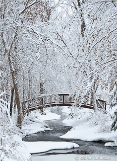 """Winter Beauty"" by Garen Johnson - In the Moment: Michael Frye's Landscape #Photography #Winter #Snow"