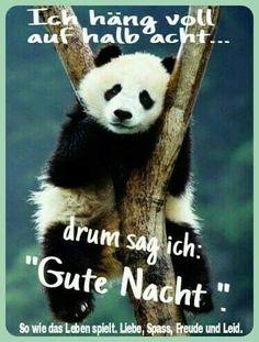 Wünsche all meinen FB Freunden auch eine Gute Nacht und süße Träume - http://guten-abend-bilder.de/wuensche-all-meinen-fb-freunden-auch-eine-gute-nacht-und-suesse-traeume-58/