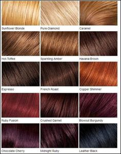 Name Of Hair Color Styles Shades Of Red Hair Chart  Google Search Hair Color Names Instead .