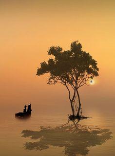 maya47000:  Life is beautiful by iD's