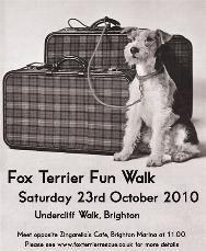 wire terrier fun walk poster