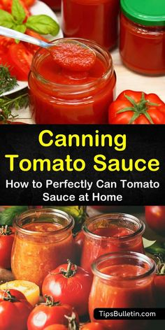 Discover how to make spaghetti with meat sauce recipes and other comfort foods all year long! Our guide to canning tomato sauce in Ball jars in a pressure canner or in an instant pot water bath without a canner is perfect for beginners. Easy Canning, Canning Tips, Tomato Canning Recipes, How To Make Tomato Sauce, How To Can Tomatoes, Canned Spaghetti Sauce, Canned Tomato Sauce, Canning Food Preservation, Preserving Food