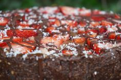 The Tasty K   Raw Chocolate Mousse Cake   http://thetastyk.com