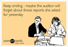 I seriously didn't think I would find anything funny under 'auditor humor'. I was right. ;)