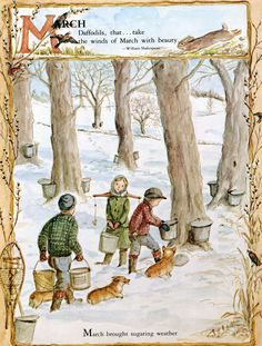 """Vintage Children's Book illustration,from """"A Time to Keep"""" by Tasha Tudor. Collecting sap to make maple syrup. The Tudors, Images Victoriennes, Les Religions, Art Original, William Shakespeare, Its A Wonderful Life, Book Illustration, Daffodils, Oeuvre D'art"""