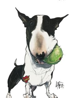 Bull Terrier Funny, Bull Terrier Tattoo, British Bull Terrier, English Bull Terriers, Friends Illustration, Inspiration Artistique, Most Beautiful Dogs, Cartoon Dog, Dog Quotes