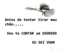 Eu sei voar