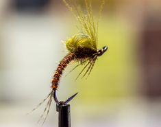 curved emerger.  instruction not  included