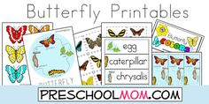 Free Preschool Butterfly Printables from PreschoolMom.com.  Includes lifecycle, classroom charts, minibooks, file folder games and more!