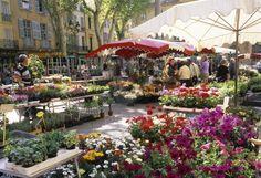 flower market at Place de l'Hotel ... Aix en Provence, France