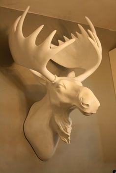 moose head - Google Search