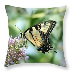 "Eastern Tiger Swallowtail 2 Throw Pillow (14"" x 14"") by Tammy Finnegan.  Our throw pillows are made from 100% cotton fabric and add a stylish statement to any room.  Pillows are available in sizes from 14"" x 14"" up to 26"" x 26"".  Each pillow is printed on both sides (same image) and includes a concealed zipper and removable insert (if selected) for easy cleaning."