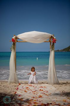 Beautiful wedding arbor - love the simplicity of this one :)