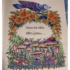 Creative Haven Whimsical Gardens Coloring Book Creative