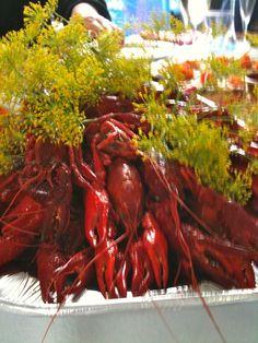 Crawfish Dinner in Sweden