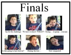 31 Best Finals Memes Images The Funny Just For Laughs Bones Funny