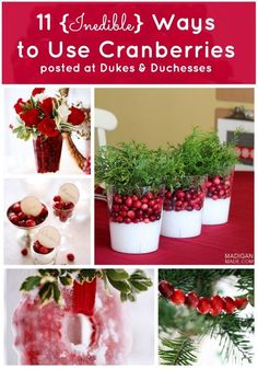 cranberries - I used to go to Cranfest in Warrens, WI and buy a whole case of fresh cranberries. We had a lot of cranberry decorations for the holidays.